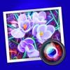 Spektrel Art (AppStore Link)