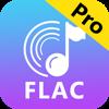 Cualquier convertidor FLAC-MP3 (AppStore Link)