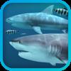 Tiburones 3D (AppStore Link)