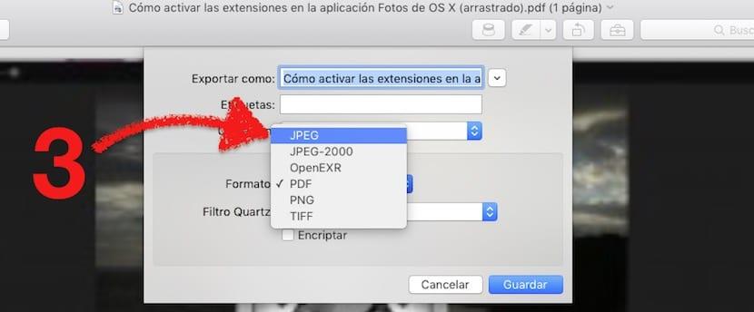Paso 2 PDF a JPEG