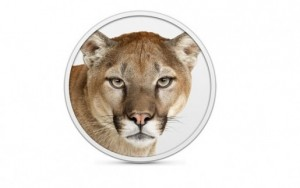 mountain-lion-515x323