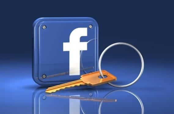 Facebook-bug-0
