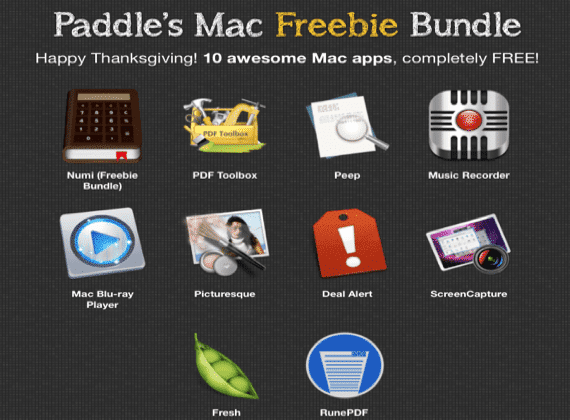 paddle-bundle