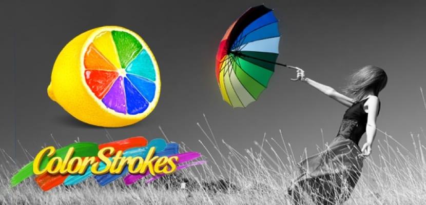 colorstrokes-logo