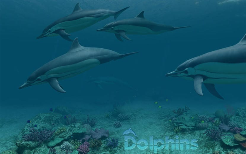 app-delfines-1
