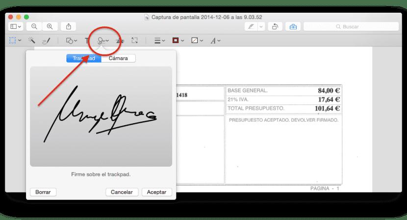 vista-previa-insertar-firma-trackpad-2