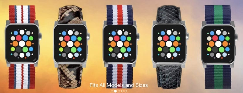 Click___Watchband_Adapter_for_Apple_Watch