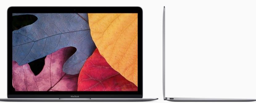pantalla-nuevo-macbook-12