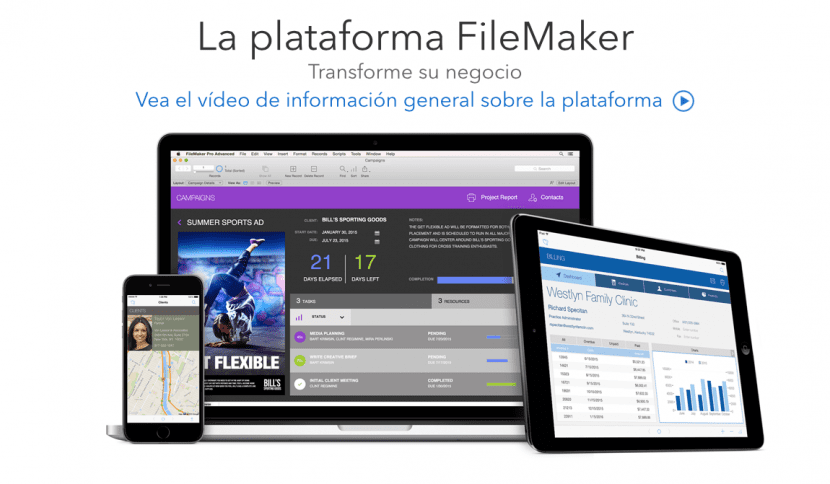 Filemaker 14-base de datos-empresa-mac-0