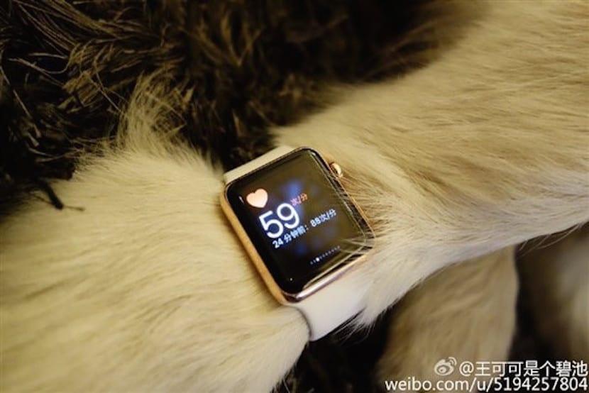Perro-Apple-Watch-rosa
