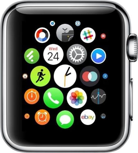 Home-Screen-on-Apple-Watch