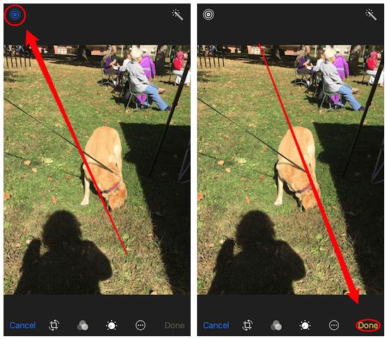 Cómo eliminar la versión Live Photo de una Foto