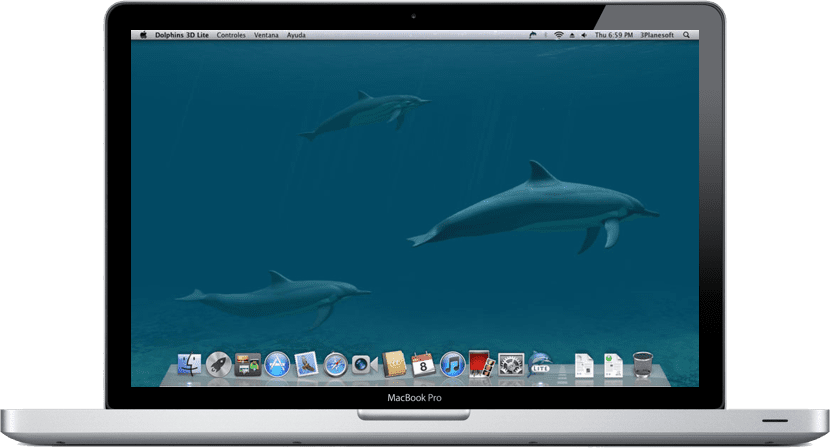 dolphins-macbook-pro