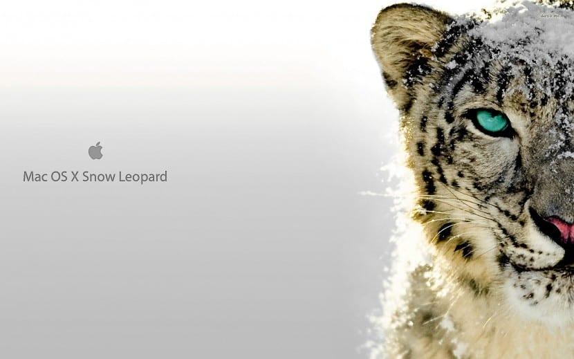 Snow Leopard-actualización-1