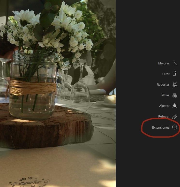 Muestra del Botón Extensiones en la App de Fotos