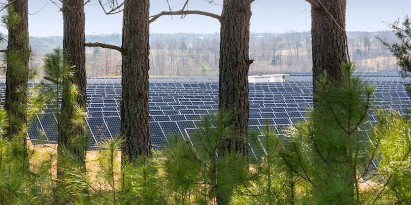 apple-planta-solar