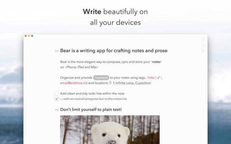 bear-notas-mac
