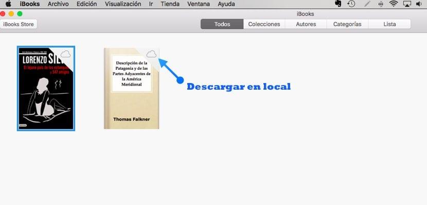 Descarga en local libros ibooks