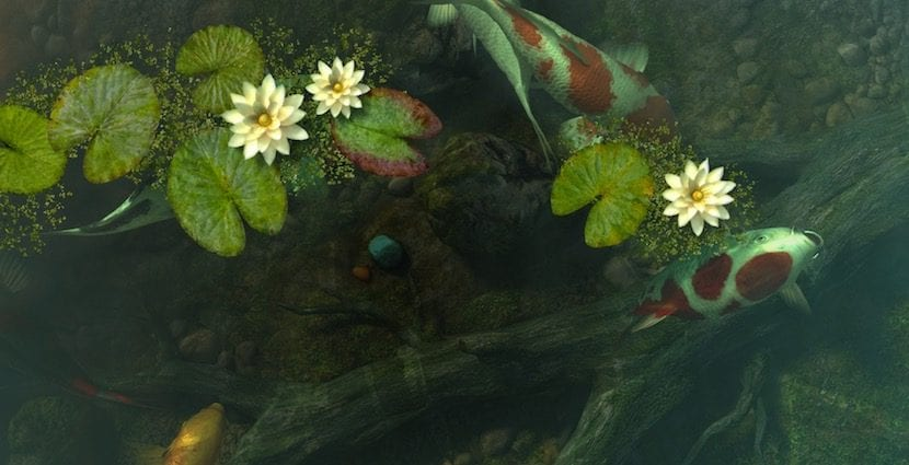 Quieres tener un estanque koi en tu mac con koi pond 3d for Estanque koi pequeno