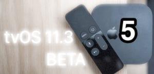 Beta 5-tvOS 11.3