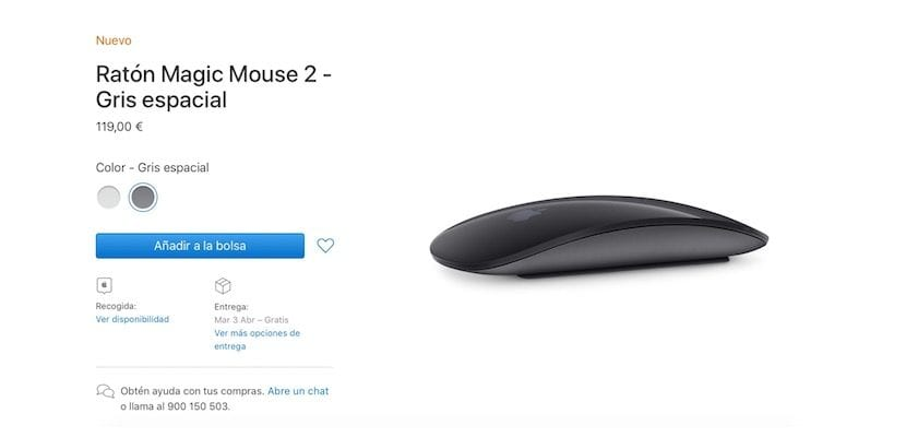 Magic Mouse gris espacial
