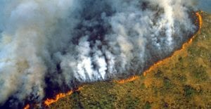 Amazonas quemado