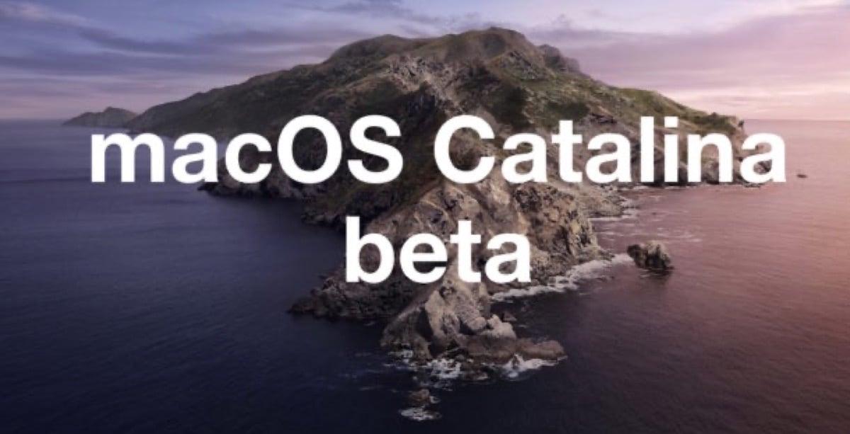 Catalina Beta