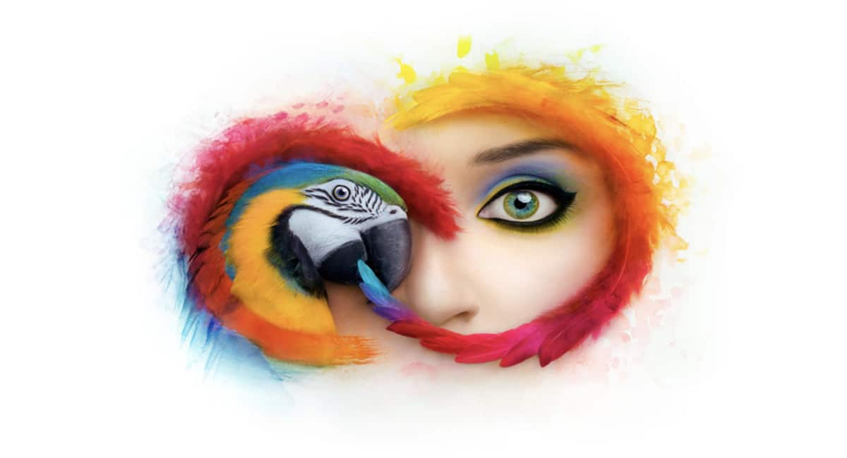 Adobe creative cloud se actualiza