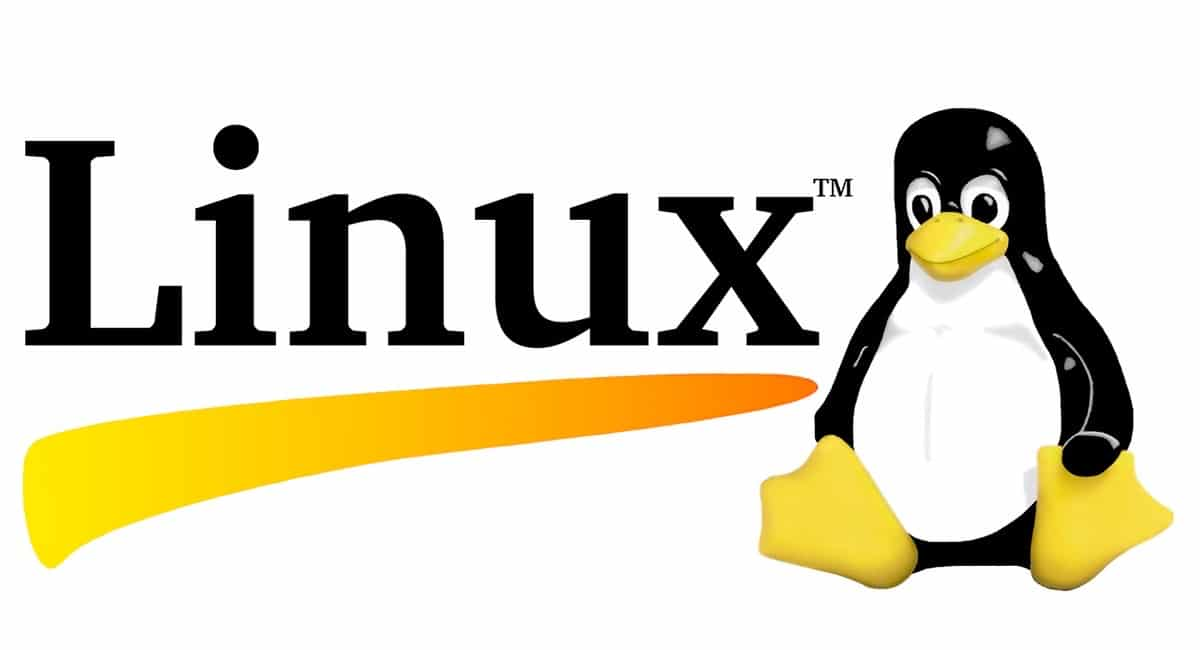 MacOS Catalina ya en Linux
