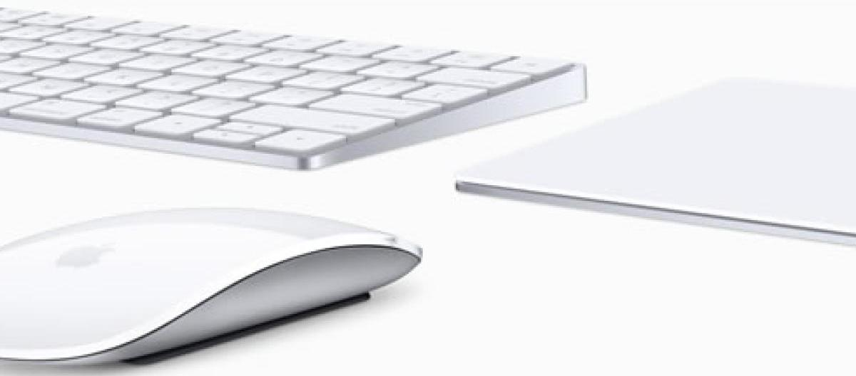 Mouse y trackpad