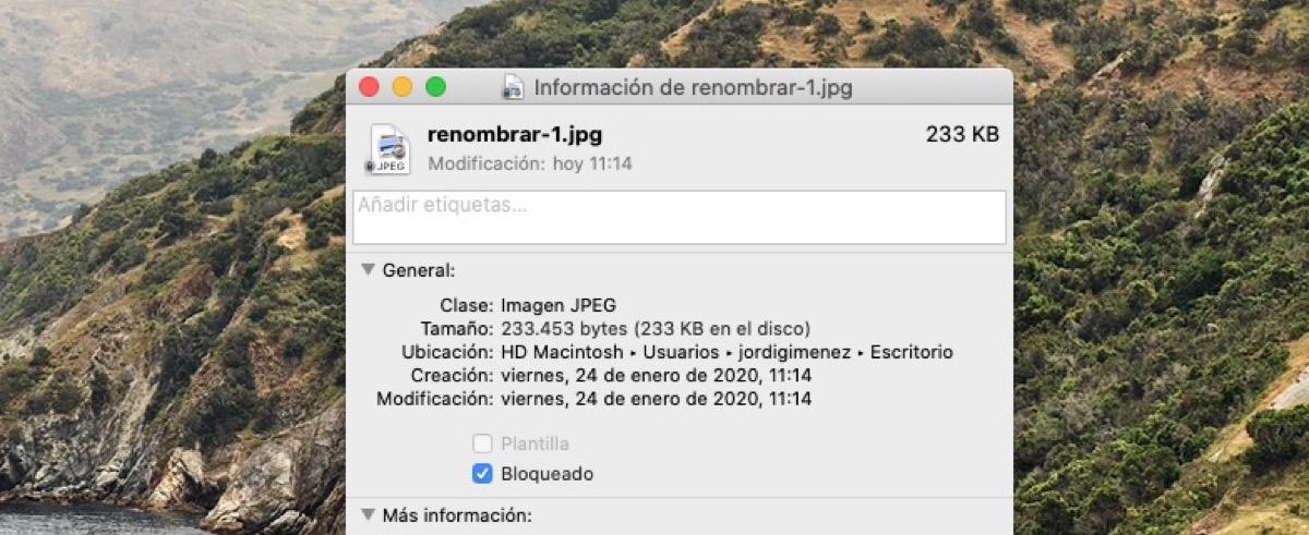Renombrar archivos