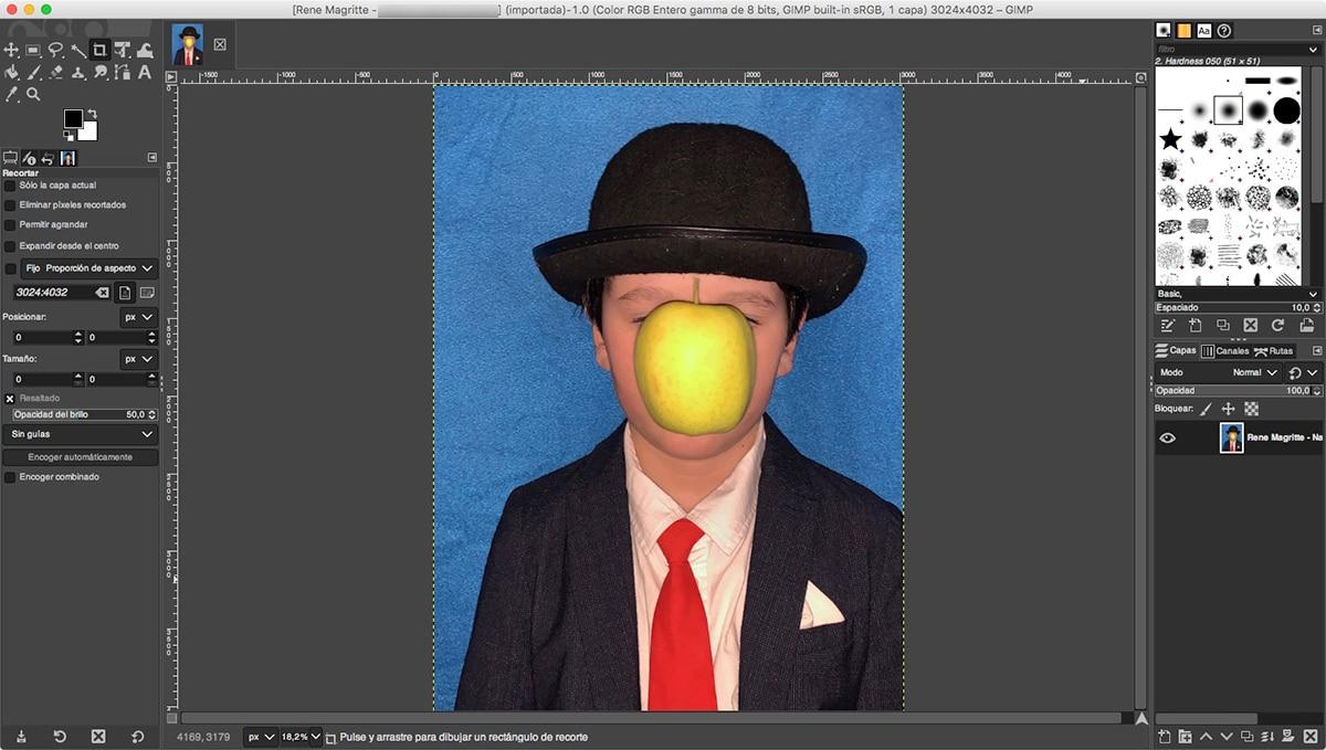 GIMP para macOS
