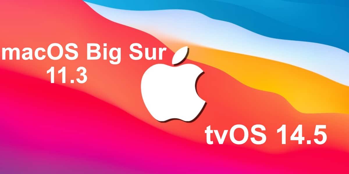 Big Sur 11.3